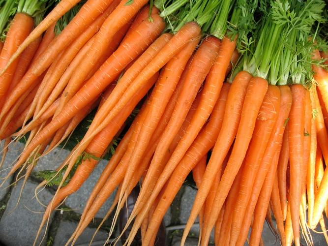 kaalit-kasvikset-puutarha-keskumaki-peruna-porkkana-2